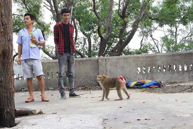 Du khach tham quan chua Chau Thoi bat an voi hau due Te Thien Dai Thanh