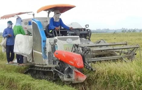 Cảnh cáo nữ cán bộ nhận hơn 237 triệu tiền 'cám ơn' của nông dân