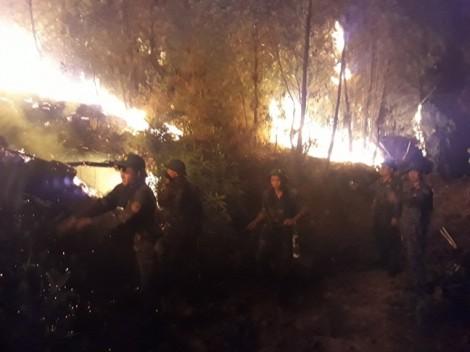 10 héc ta rừng thông cháy rụi vì nước xa không cứu được lửa gần