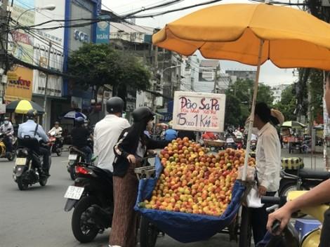 Đào Trung Quốc 'gắn mác' Sapa bán la liệt tại Sài Gòn