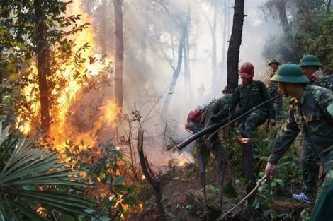 Dùng cát lấp cây xăng đang bị cháy rừng uy hiếp