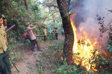 Tạm giữ người đàn ông nghi gây ra vụ cháy rừng lớn nhất Hà Tĩnh