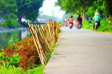 'Sức sống xanh' từ một vùng quê hẻo lánh