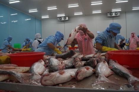 Có FTA, tôm cá khó bán như chợ nhà