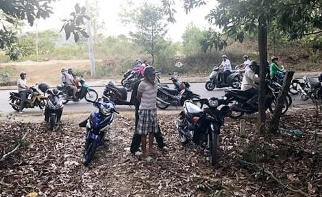 Cuộc vây bắt tội phạm giao dịch ma túy nơi rừng sâu