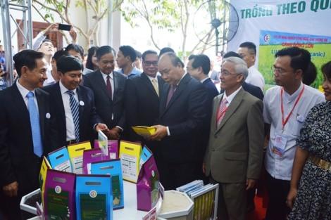 Thủ tướng Nguyễn Xuân Phúc: 'Phải tiết kiệm đất, không phá vỡ quy hoạch Phú Quốc'