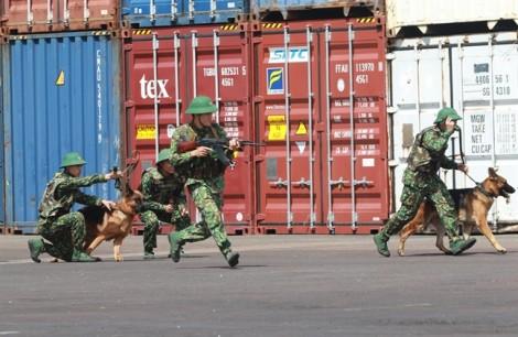 Chó nghiệp vụ, rô bốt rầm rập diễn tập chống khủng bố