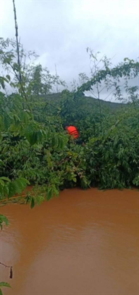 Giải cứu ông già 72 tuổi mắc kẹt trên cây điều giữa dòng nước chảy xiết