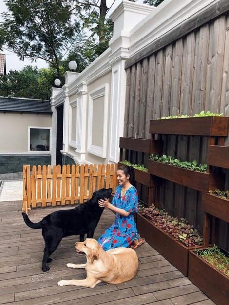 Vườn rau sang chảnh của nhà 'ngọc nữ' Tăng Thanh Hà
