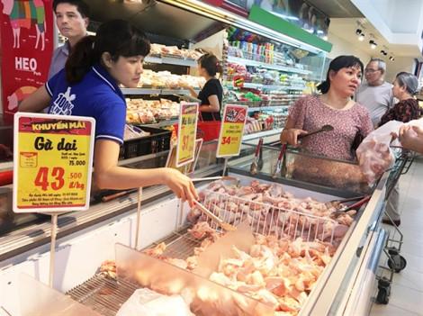 Chuộng gà thải loại, coi chừng 'sướng miệng hại thân'