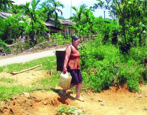 Hạn nặng, dân phải uống nước suối trâu dầm