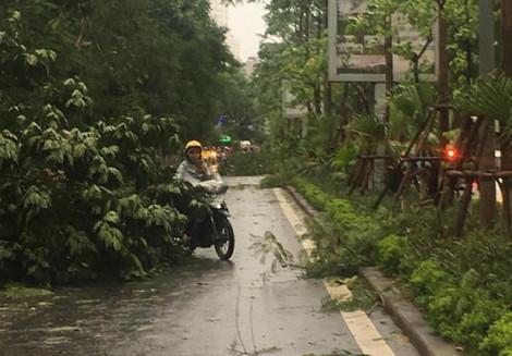 Mưa giông quật ngã nhiều xe máy tại bán đảo Linh Đàm ở Hà Nội