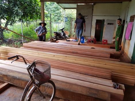 Vụ thôn trưởng khai thác gỗ trái phép: Phát hiện 200m3 gỗ trên 30ha rừng bị tàn phá
