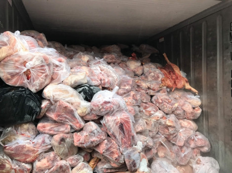 Bắt 3 thùng container chứa hàng chục tấn thịt heo thối