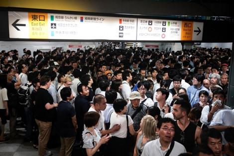 Hệ thống giao thông miền Đông Nhật Bản tê liệt vì bão