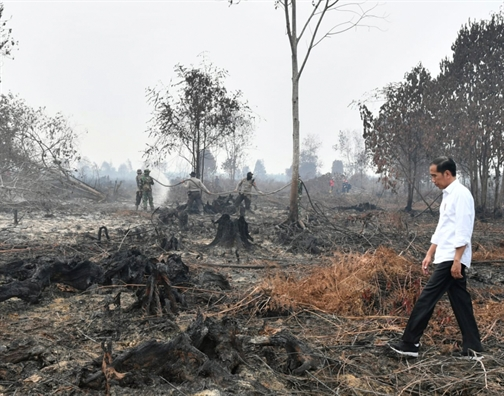 Hang ngan truong hoc o Malaysia va Indonesia dong cua vi o nhiem khong khi