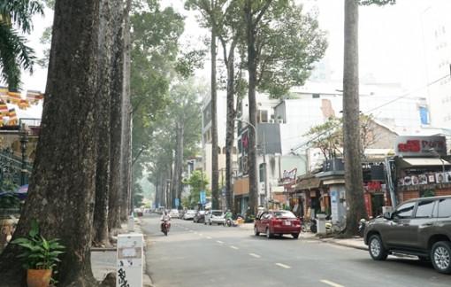 Đường Sương Nguyệt Anh – nơi Sài Gòn không có nắng