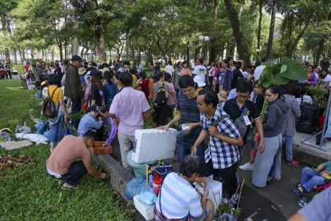 Cả ngàn người hẹn gặp ở công viên để tặng nhau hạt giống, cây giống