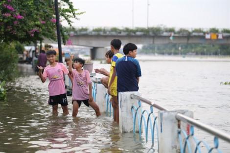 Mới đầu mùa triều cường, Sài Gòn đã ngập lênh láng khắp nơi