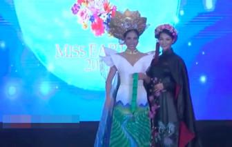 Trang phục truyền thống Việt Nam tại 'Hoa hậu Trái đất 2019' có giải