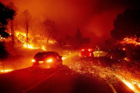 Cháy khoảng 6.500 ha rừng ở California, hơn 40.000 người tháo chạy