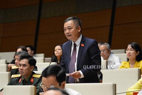 Đại biểu Nguyễn Lân Hiếu đề nghị xem lại các dự án xẻ núi, phá rừng