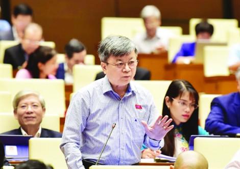 Đại biểu Quốc hội Trương Trọng  Nghĩa: 'Hủy hoại thiên nhiên để tăng trưởng là đang đi chệch hướng'