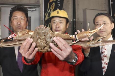 Con cua tuyết đạt mức giá kỷ lục hơn 1 tỷ đồng tại phiên đấu giá ở Nhật bản