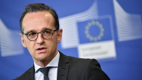 Tổng thống Pháp gọi NATO là 'chết não', Đức lên tiếng