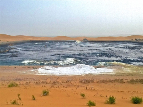 Trung Quốc: Lại bê bối ô nhiễm gần khu bảo tồn cạnh sa mạc Tengger