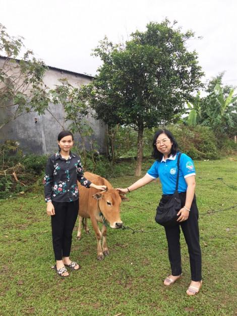 Trao bò, bàn giao giếng nước và nhà vệ sinh cho dân nghèo Quảng Trị