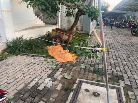 Người đàn ông chết dưới gốc cây, nghi nhảy lầu chung cư Ehome 4