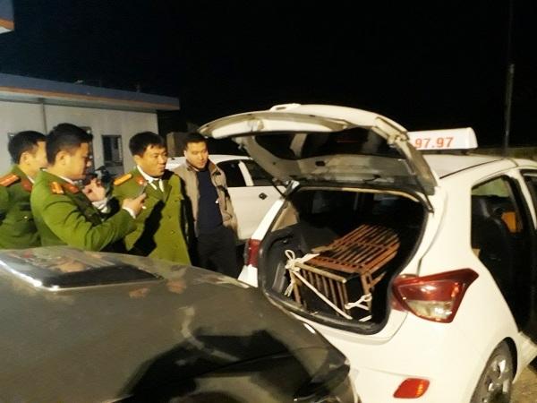 Dung xe taxi cho gau 100kg di tieu thu trong dem