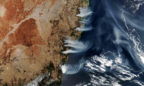Cháy rừng ở Úc giải phóng lượng CO2 khổng lồ, khó có thể phục hồi