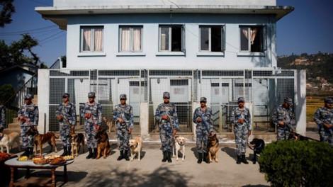 Nepal bắt 122 người Trung Quốc bị tình nghi phạm tội tài chính