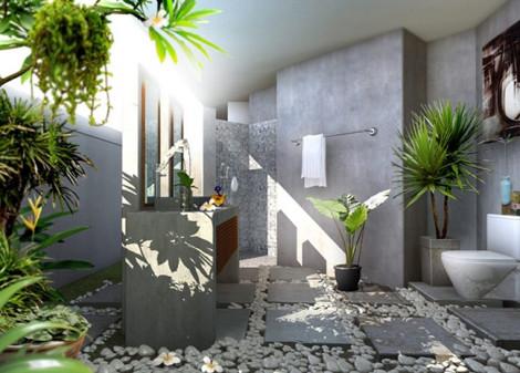 Cách đặt cây cảnh trong nhà hút tài lộc ngày tết
