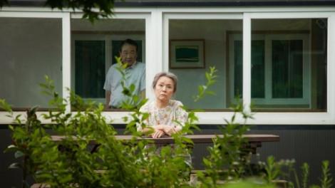Mẹ già ngồi cửa ngóng chờ con