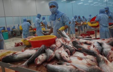 Xuất khẩu thủy sản 2019 tăng trưởng âm