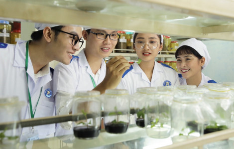 Trường đại học Văn Hiến mở thêm bảy ngành học mới
