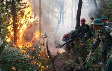 Người phụ nữ tử vong khi tiếp nước chữa cháy rừng được truy tặng Huân chương dũng cảm
