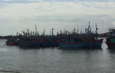 8 ngư dân nghi ngộ độc do ăn ốc biển, trong đó 1 người đã tử vong