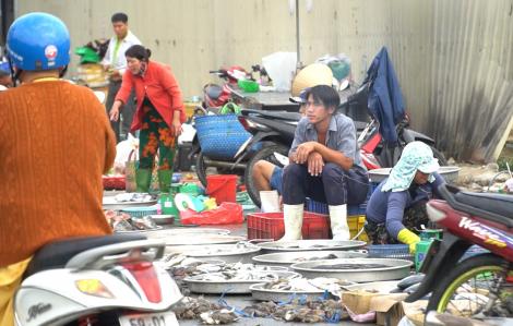 Ngày 13/1, UBND quận 8 có phương án 'dọn dẹp' chợ tự phát Quản Trọng Linh