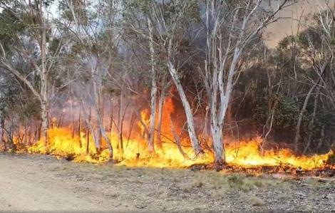Úc kiểm soát thành công đám cháy lớn nhất gần Sydney