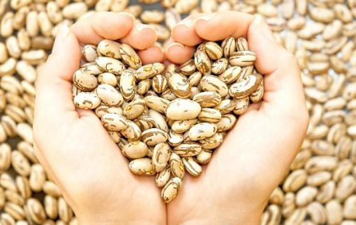 Đậu khô - Sự lựa chọn tuyệt vời cho những bữa ăn dinh dưỡng