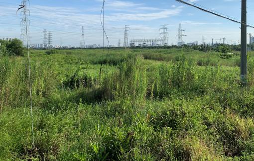 Phân lô bãi đất trống gần 350 ha sang tay hàng tỉ đồng?