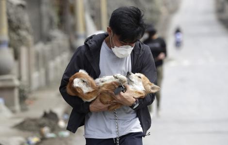 Cứu hộ động vật quanh vùng núi lửa Taal