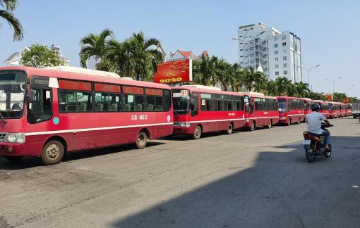 TPHCM: Hàng loạt tài xế xe buýt lãn công vì thu nhập thua lỗ dịp Tết
