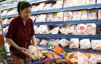 Giá gà thịt chỉ còn 8.000 đồng/kg
