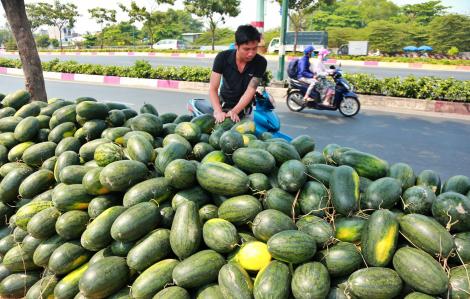 Ứ đọng tại biên giới vì dịch corona, dưa hấu, thanh long đổ về Sài Gòn chờ giải cứu
