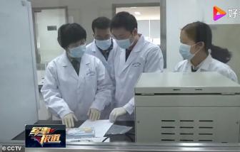 Trung Quốc bổ nhiệm chuyên gia quân sự tiếp quản phòng thí nghiệm virus tại Vũ Hán
